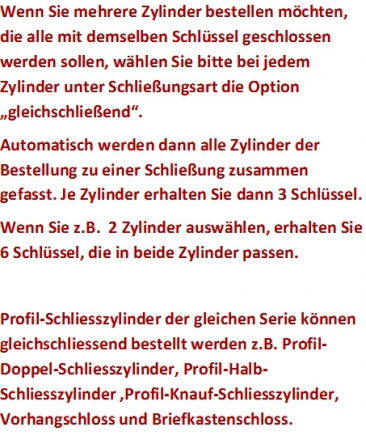 BKS Helius Profil-Doppel-Schließzylinder