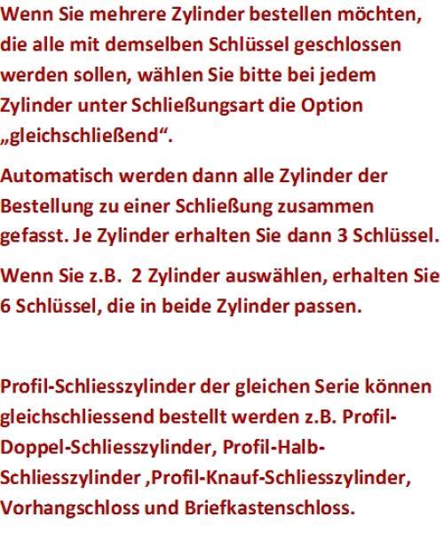 Schliesszylinder Dom Ixsaturn 2in1 Profil Doppel Schliesszylinder